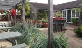 an exotic pub garden with spotlights on the pergola in Somerset