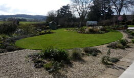 the curved lawn a year after planting