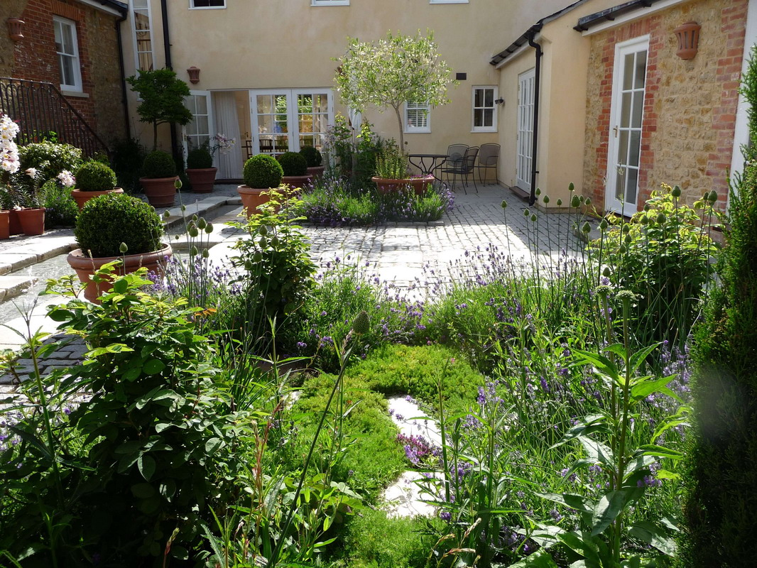 chamomile in a Somerset courtyard